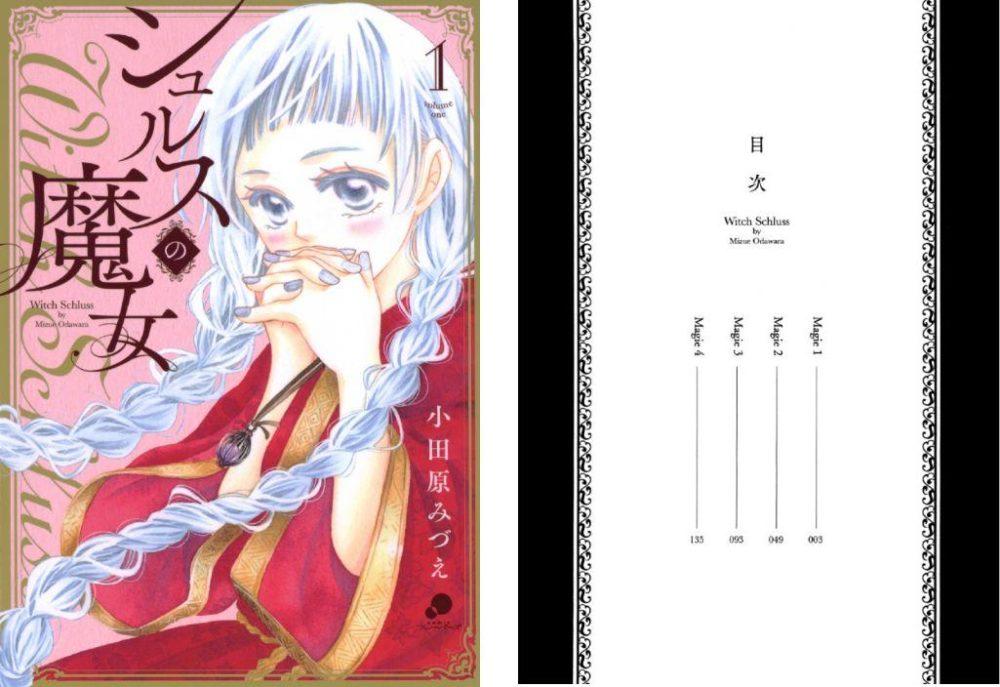 シュルスの魔女【第1巻】のネタバレ・感想!魔女と戒魔師の出会い
